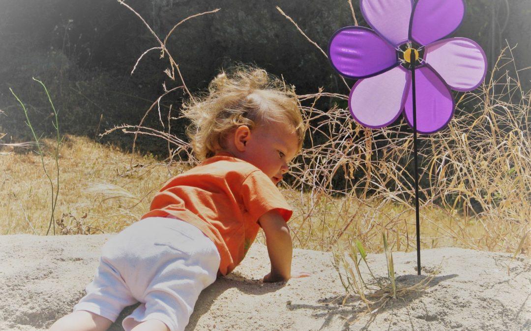 Tiempo de valientes y dulces Violetas
